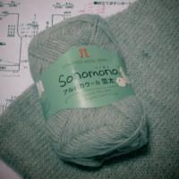 ハマナカ ソノモノ アルパカウール並太でメンズベスト編み始めています。